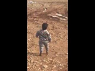 Маленький мальчик просчитал уровень своей смелости