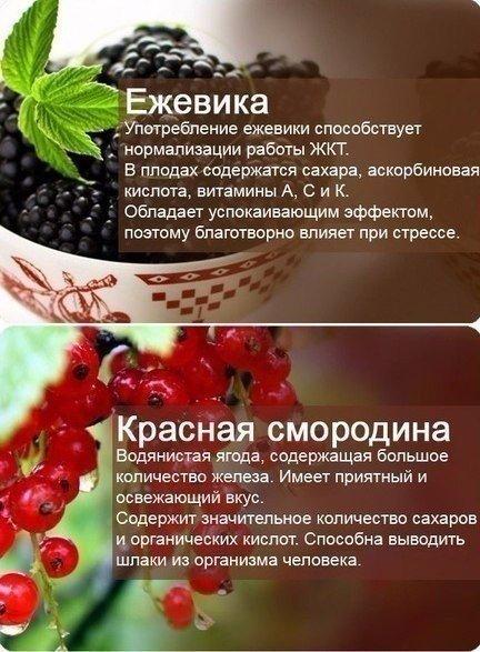 Польза продуктов!
