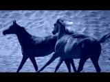 Mercan Dede - Napas Relax