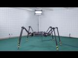 Даже роботы умеют танцевать