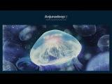Jaytech &amp James Grant - Anjunadeep 02 CD2 (Continuous Mix)