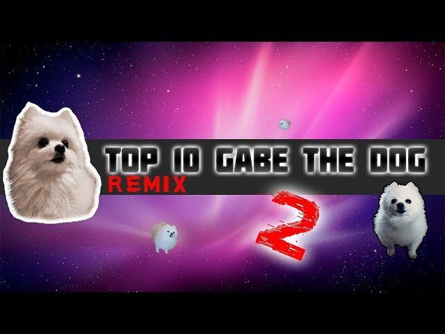 TOP 10 GABE THE DOG REMIX 2!|Топ 10 Гейб собак Ремикс 2!| Ripgabe