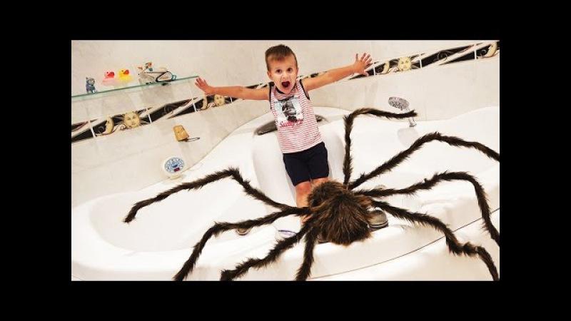 ★ ГИГАНТСКИЙ ПАУК напал на Мальчика GIANT SPIDERS ATTACK Человек Паук спасает Рому Video for Kids