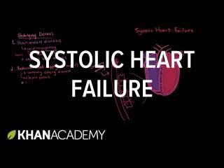 Systolic heart failure pathophysiology | Circulatory System and Disease | NCLEX-RN | Khan Academy