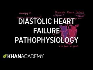 Diastolic heart failure pathophysiology | Circulatory System and Disease | NCLEX-RN | Khan Academy
