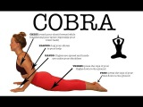 Cobra Pose (Bhujangasana) — Yoga Pose (FitABS)