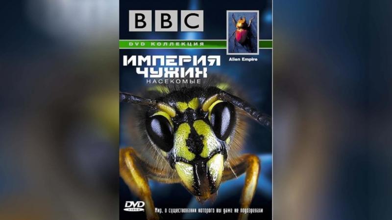 BBC Империя чужих. Насекомые (1996) | Alien Empire
