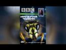 BBC Империя чужих Насекомые 1996 Alien Empire