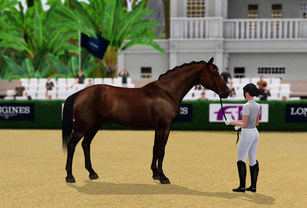 Регистрация лошадей в RHF 2 - Страница 3 RHR78arKKX4