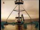 Акульи пастухи Чудовище с Птичьего острова 4 я серия 2012