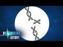 Генетика Редактирование генома Медицина будущего