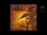 Nokturnal Mortum - стина Verity (Full Album)