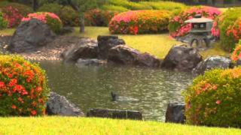 Japanese Gardens Японские сады