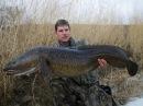 Налим 4500 зимняя рыбалка в Карелии Fishing for Burbot in Karelia