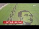 На Херсонщині з чорного рису виростили гігантський портрет Шевченка