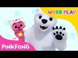 Polar Bear  Word Play  Pinkfong Songs for Children