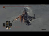 Play as Dragonslayer Armor VS Nameless King( Darksouls3 arena mode)