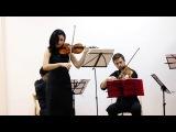 Совершенный Каданс  А.  Вивальди. Концерт ля минор для скрипки с оркестром 2-я ча...