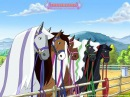 Лошадки Мультфильм, сезон 1, серия 01 Встречают по одёжке