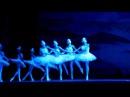 Балет Лебединое озеро, в театре Оперы и Балета, отрывок