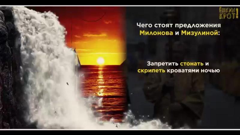 СОКУРОВ - КОШМАРНОЕ РУССКОЕ СООБЩЕСТВО