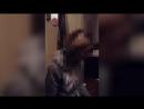 Измена и расплата. Муж опубликовал видео неверной жены, чтобы наказать её