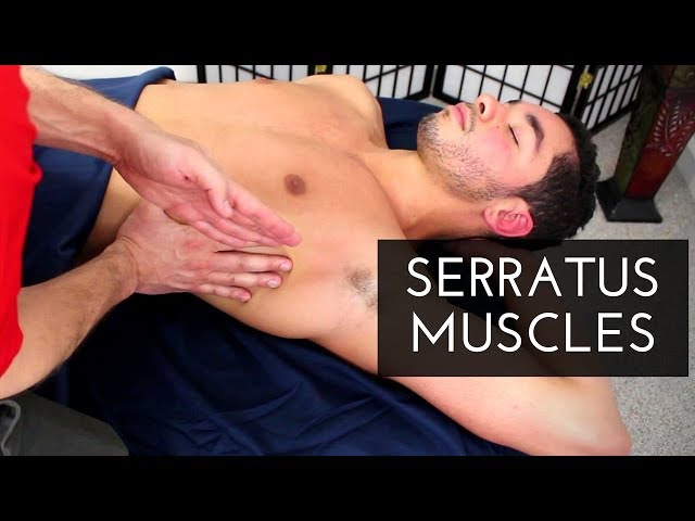 Massage Tutorial: Serratus Anterior (and its friends!)
