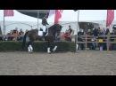 Daniëlle Heijkoop en Anky van Grunsven Horse Event 2013