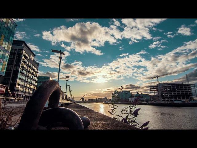 Delfin Life - Dublin