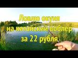Окунь на китайский воблер за 22 рубля Начинающий рыбак Саня