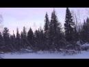 Зимняя тайга риск обморожения который описывал Джек Лондон Выживание в тайге