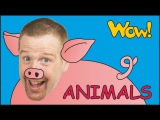 Farm Animals for Kids + MORE Steve and Maggie with Animals English Stories from Wow English TV