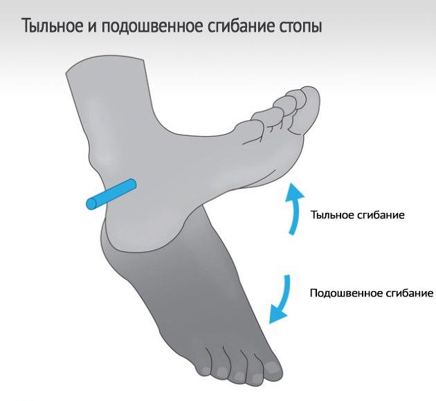 0oe6hGJoGZE Простой способ поднять эффективность сгибаний ног