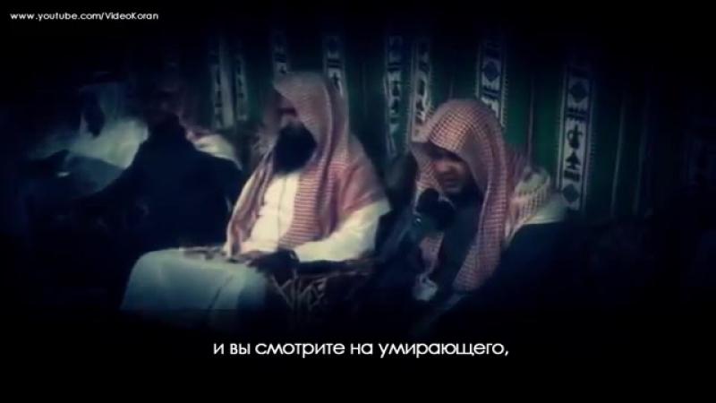Сура: 56 аль Вакиа (Событие) 75-96 Чтец: Маджид аль Хазми telegram.me/ChtenieKorana