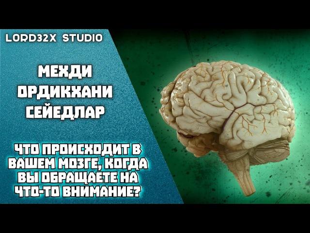 Мехди Ордикхани - Что происходит в вашем мозге, когда вы обращаете на что-то внимание
