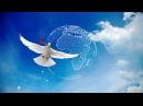Ангелы надежды Даши Винер ProShow Producer