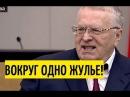 Медведев молча слушал правду от Жириновского 19 04 17