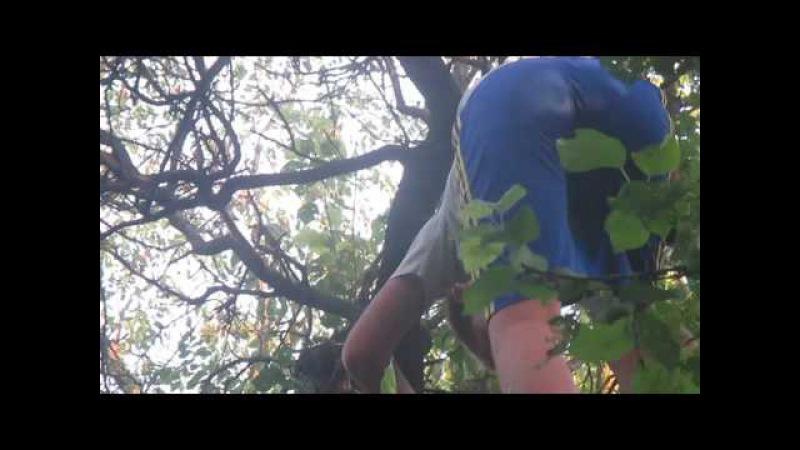 Спасение тарзана часть 2