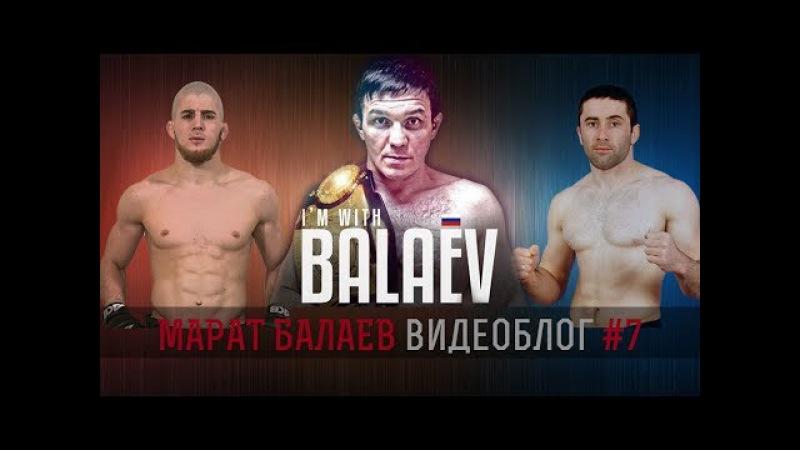 Марат Мотиватор 7 Балаев комментирует бой Юсуфа Раисова и Луиса Паломино
