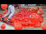 1000 воздушных ШАРОВ VS. Скейт-Парк BMX, Skateboarding in 1000 Balloons