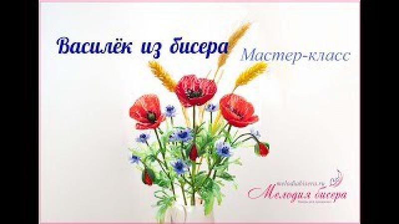 Васильки из бисера мастер-класс. Букет полевых цветов из бисера. Часть 2