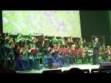 Юбилей Гомельского эстрадно-симфонического оркестра 11.11.2016