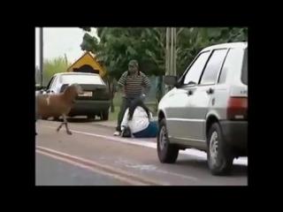 Бешеный козёл!