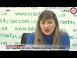 При нынешних темпах вырубки украинским лесам в Карпатах осталось жить 5-6 лет – э...
