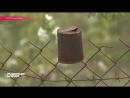 Распиленный границей сад или как купить хлеб в Южной Осетии