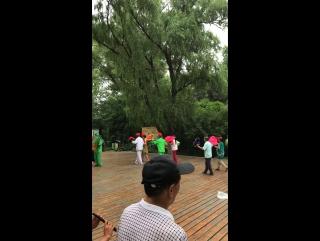 Традиционная танца Китая -Янгэ