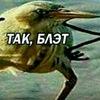 id363710942