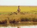 La vie sur terre - Abderrahmane Sissako  Folon - Salif Keita