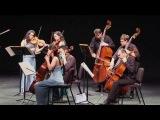 ECCO plays Penderecki's Sinfonietta for Strings (Vivace)