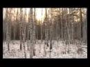 Охота на оленя выпуск 40 Охота и рыбалка в Якутии